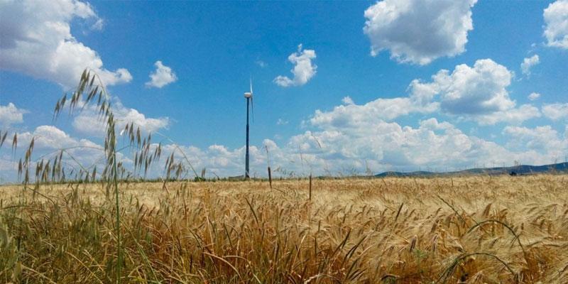 Paesaggio Ergo Wind